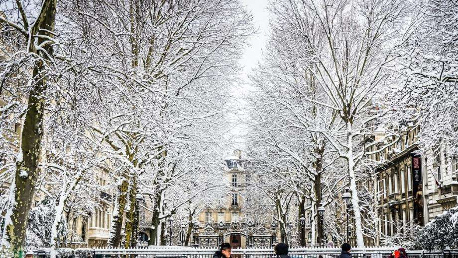 Paris in winter: chic, zen and greedy