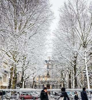 Paris en hiver : chic, zen et gourmand